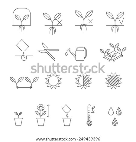 Seeding instructions, plating process steps. Set of outline vector icons - stock vector