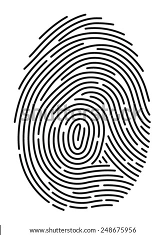Semi-simplified fingerprint on white background - stock vector