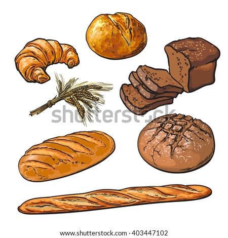 Set bread products, pastries vector on a white background, sliced loaf, French baguette, rye bread, wheat branch, cutting cakes, croissants, colored sketch style hand-drawn, bakery products, rooty - stock vector