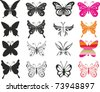 set butterfly. Isolated on White Background. Vector illustration - stock photo