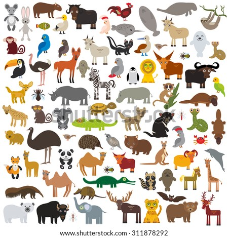 set Cartoon Animals from all over the world (Australia, North and South America, Eurasia, Africa)  isolated on white background. Vector - stock vector