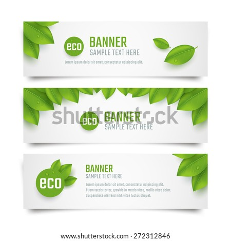 Set eco banners with fresh green leaves. Vector illustration - stock vector