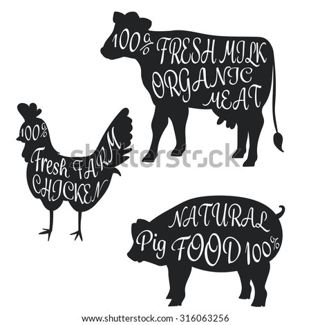 set farm animal cow pig chicken drawing doodle with detail meat brush font vector illustration - stock vector