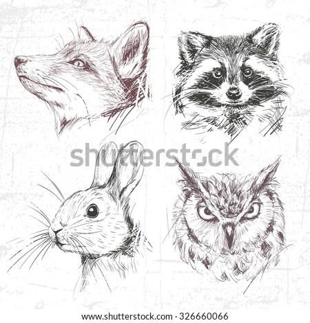 Set forest animals: fox, racoon, rabbit and owl (eagle owl), drawn by hand. See also other sets of animals. - stock vector
