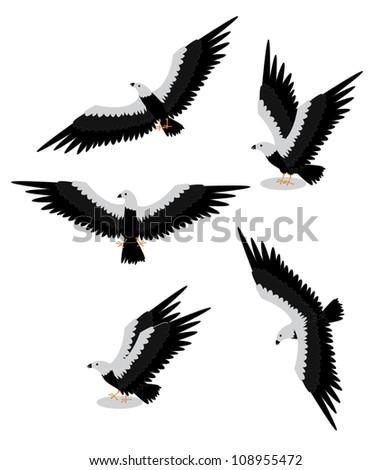 set group eagle - stock vector
