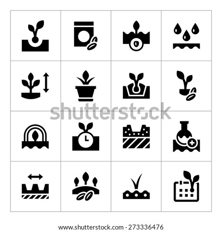 Set icons of seed and seedling isolated on white. Vector illustration