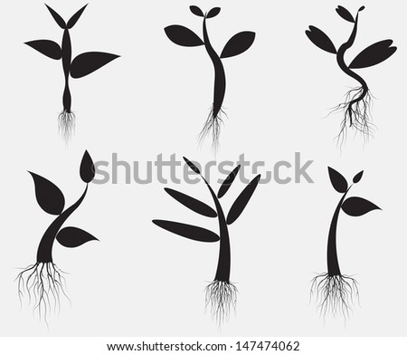 set  illustration of plant sapling growing on abstract background - stock vector
