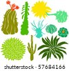 Set of a cactus silhouettes A - stock vector