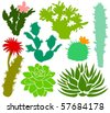 Set of a cactus silhouettes B - stock photo