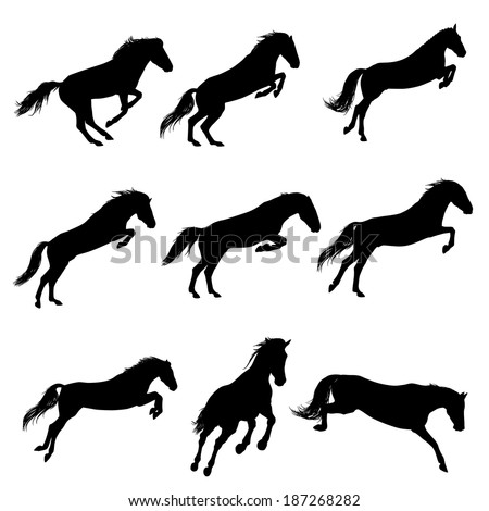 Set of a jumping horse silhouettes - stock vector