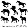 Set of a silhouette of a horse. - stock vector