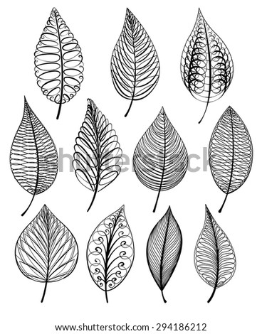 Set of abstract isolated leaves. Vector illustration.