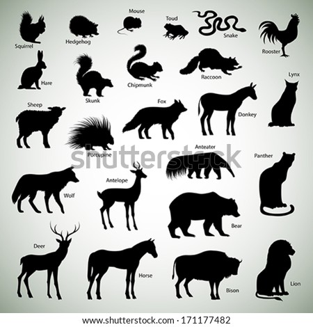 Set of animal silhouettes on abstract background - stock vector