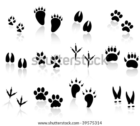 set of animal tracks black