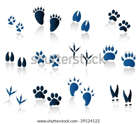 set of animal tracks blue - stock vector