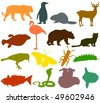 Set of animals icons F  - silhouettes - stock vector