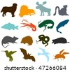 Set of animals icons  - silhouettes A - stock vector