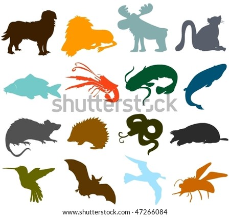 Set of animals icons  - silhouettes A