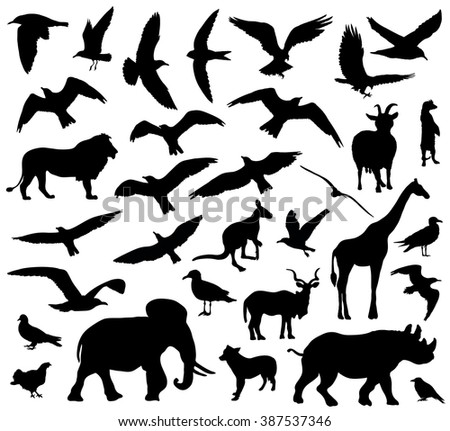 Set of animals silhouettes on white background. Vector illustration - stock vector