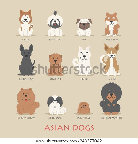 Set of asian dogs , eps10 vector format - stock vector