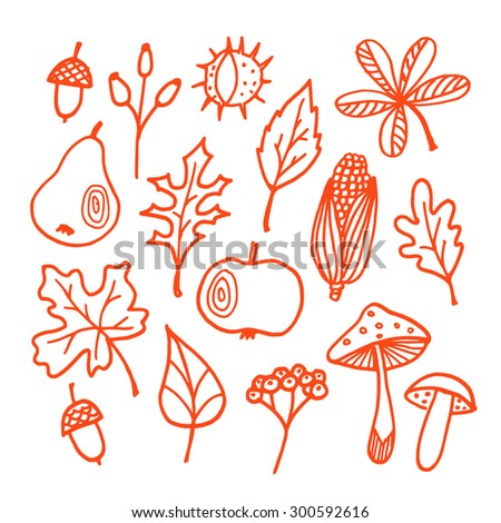Set of autumn fall elements, various leaves, apple, pear, acorn, mushrooms, isolated vector sketches - stock vector