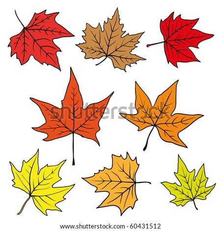 set of autumn leaves - stock vector