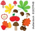 Set of autumnal nature elements on white background. - stock vector