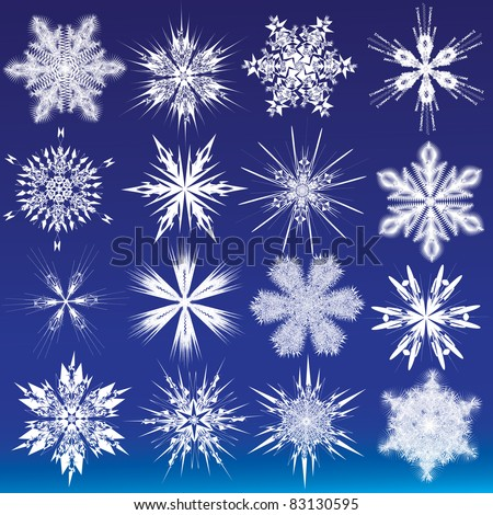 Set of beautiful snowflakes. Vector illustration - stock vector