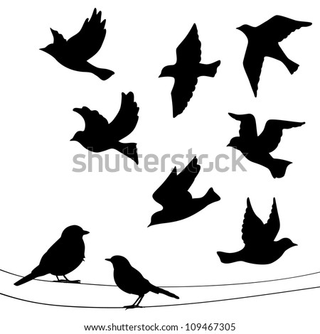 Set Birds Silhouettes Flying Sitting Stock Vector ...