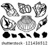 set of black and white sea shells - vector collection of fine outlines - stock vector