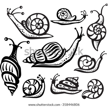 Set of black and white snails - stock vector