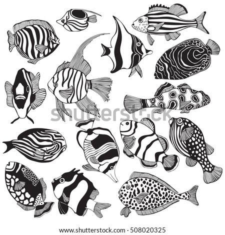 Set Of Black And White Tropical Fish Exotic Coloring Book Page For Adult