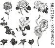 Set of black flower design elements isolated on White background.   Vector illustration. - stock vector