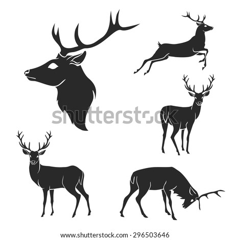 Set of black forest deer silhouettes. Suitable for logo, emblem, pattern, typography etc. Isolated black on white background. Vector illustration - stock vector