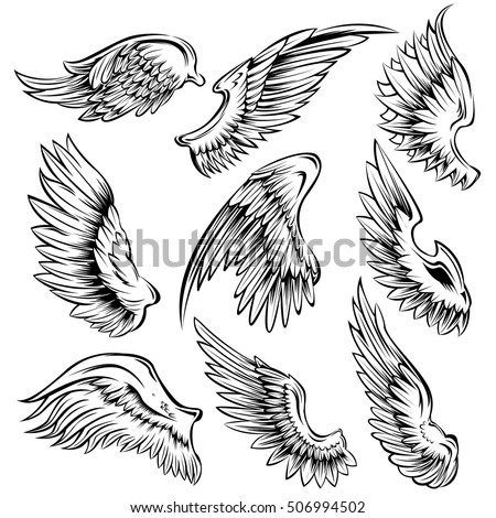 Set Black White Bird Wings Different Stock Vector