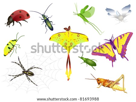 Set of bugs - stock vector