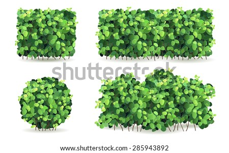 Set of bushes of different shapes on a white background isolated, stylized vector illustration. - stock vector
