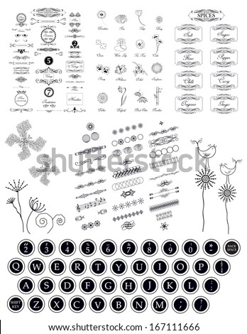 set of calligraphic vintage elements and old typewriter keys with alphabet letters isolated on white background - stock vector