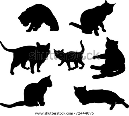 Set of cats silhouettes  in different poses - stock vector