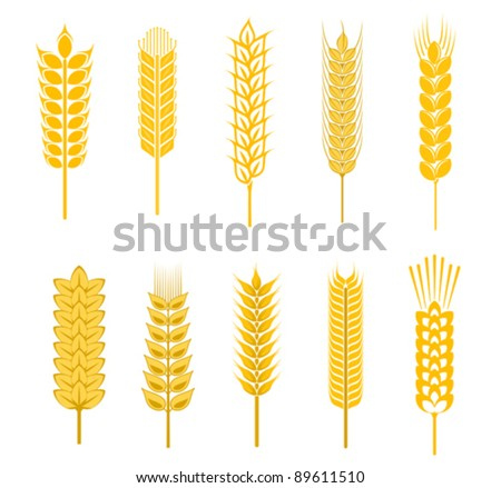 Set of cereal symbols for agriculture design isolated on white background, such a logo. Jpeg version also available in gallery - stock vector