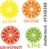 Set of citrus fruit - lemon, orange, grapefruit and lime. - stock vector