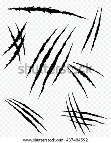 Set of claw scratches, isolated on white background, vector illustration