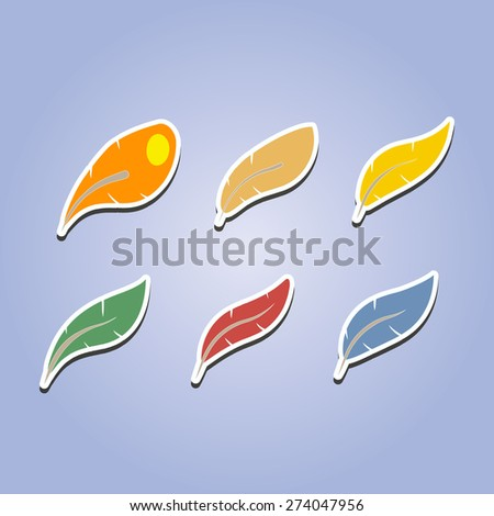 set of color icons with feathers  for your design