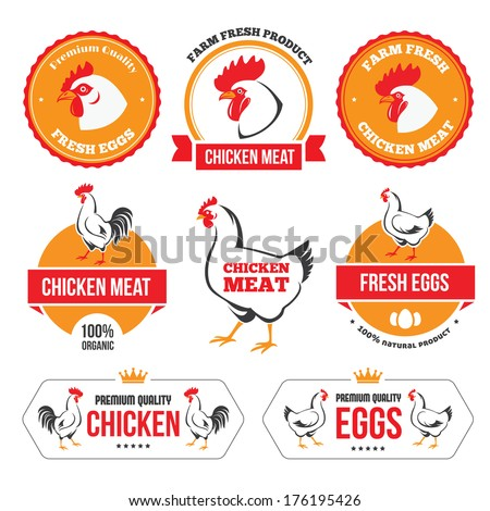 Set of colored labels and emblems of chicken meat and eggs in vector - stock vector