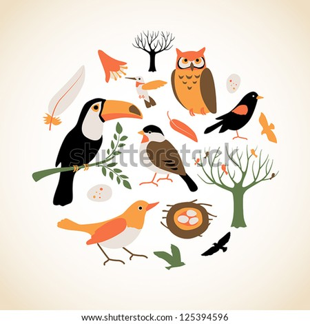Set of cute bird related icons arranged in a circle. - stock vector