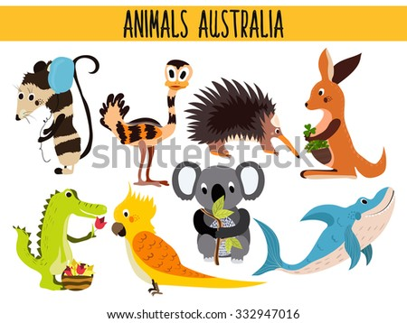Set of Cute cartoon Animals and birds of Australia and its ostrovov. Kangaroo, possum, numbat, the Koala bear, EMU, parrot, alligator, echidna, and a predatory shark . Vector illustration - stock vector