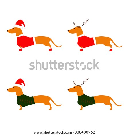 Set of cute dachshund brown with Christmas suit isolated on white background. Flat style vector illustration