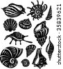 Set of decorative shell - stock vector