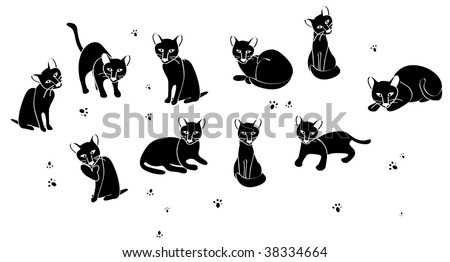 cats silhouettes poses vector stock vector 97639787
