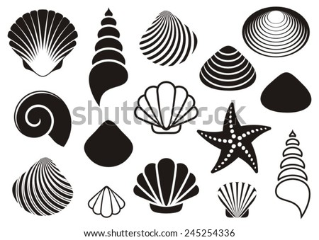 Set of different black sea shells and starfish - stock vector